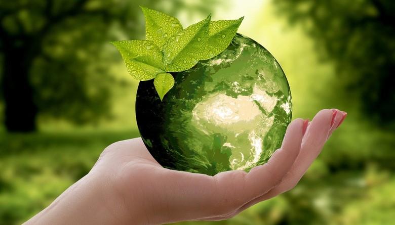 22 kwietnia obchodzimy Międzynarodowy Dzień Ziemi